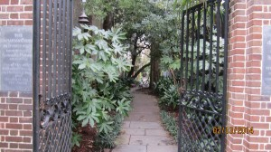 A glimpse of a courtyard in Charleston's downtown historic district