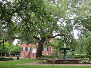 In Savannah, tourists admire a series of squares with running fountains curtained by trees