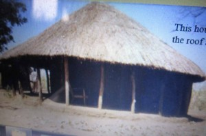 See Zambia Vernacular Architecture (link in story) website for the real photo
